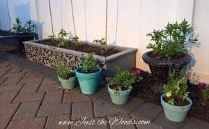 Update the yard with raised garden beds - Paint, stencil and sealed by Just the Woods