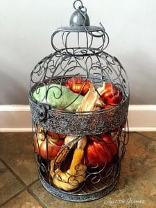 Birdcage for Home Decor