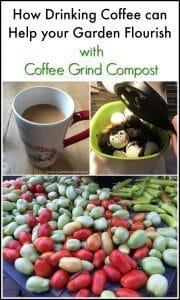 coffee-grind-compost, garden, compost,