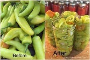 peppers-in-jars, jarred peppers, garden grown
