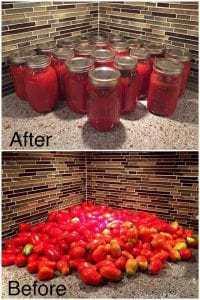 tomato-sauce, home made sauce, compost, garden