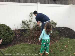 cut-out-bushes, diy with kids, garden with kids, how to build a shed