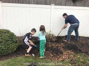 dig-out-bushes, garden with kids, diy with kids