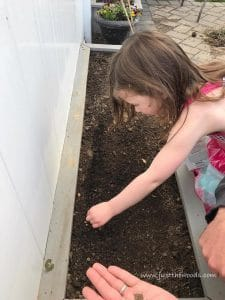 drop-seeds-in-garden, gardening with kids