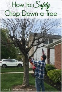 how-to-chop-down-a-tree