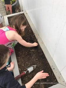 planting-seeds, gardening with kids