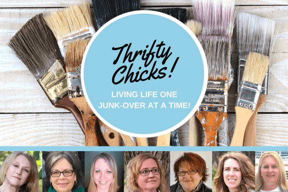 Thrifty Chicks monthly blog project share.