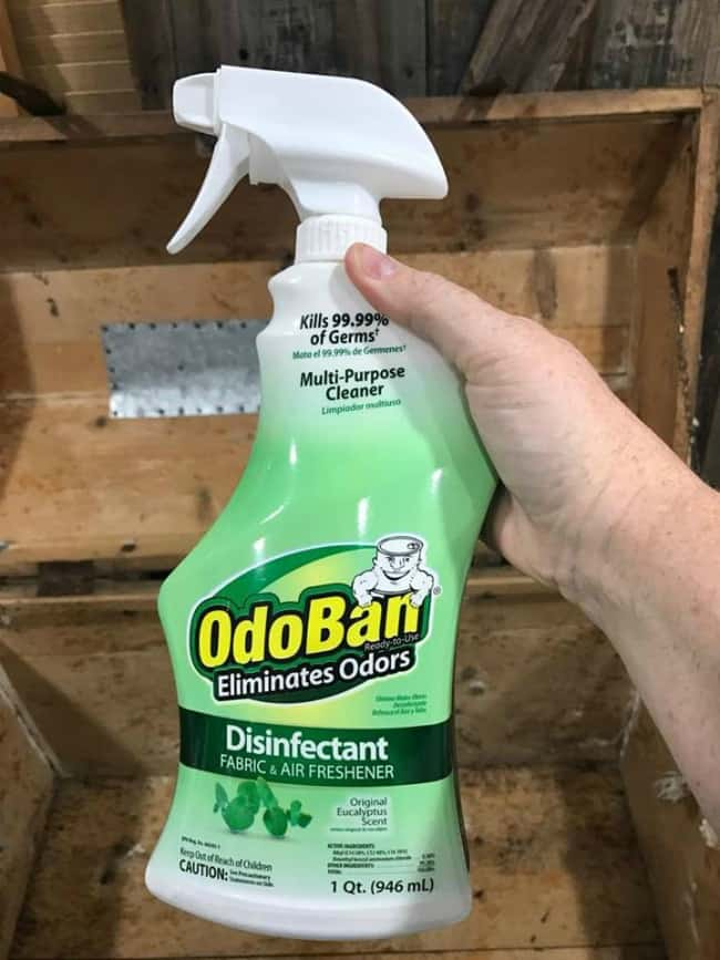 odoban, eliminate odors, remove mildew odor from wood, restore steamer trunk