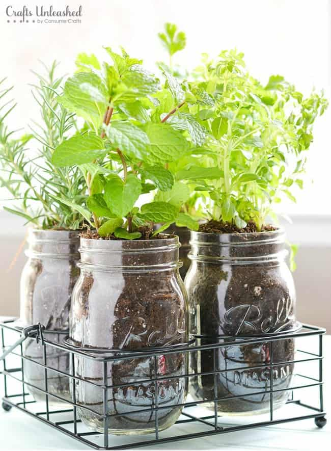 diy herb garden, diy kitchen projects, mason jar ideas