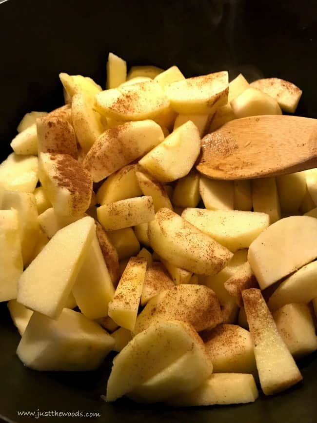 cinnamon on apples, cinnamon applesauce, applesauce recipe