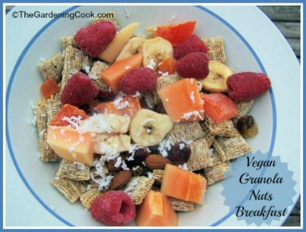 breakfast granola, healthy breakfast idea, healthy simple breakfast ideas