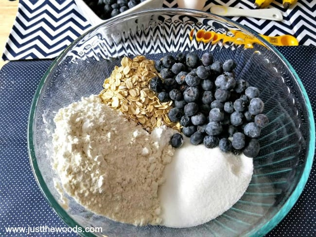 gluten free blueberry oat muffins, healthy oat muffins, blueberry muffin recipes