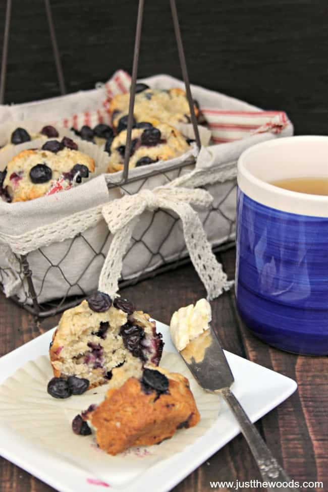 blueberry oat muffins, blueberry muffins, how to make blueberry muffins, blueberry oatmeal muffin recipes