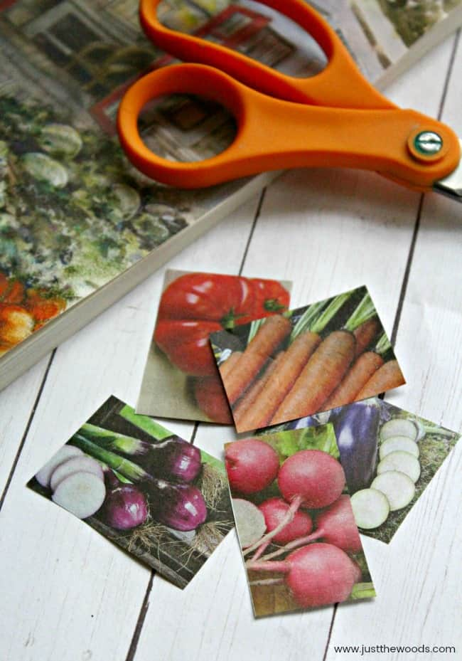 plant markers, garden markers, vegetable identification tags