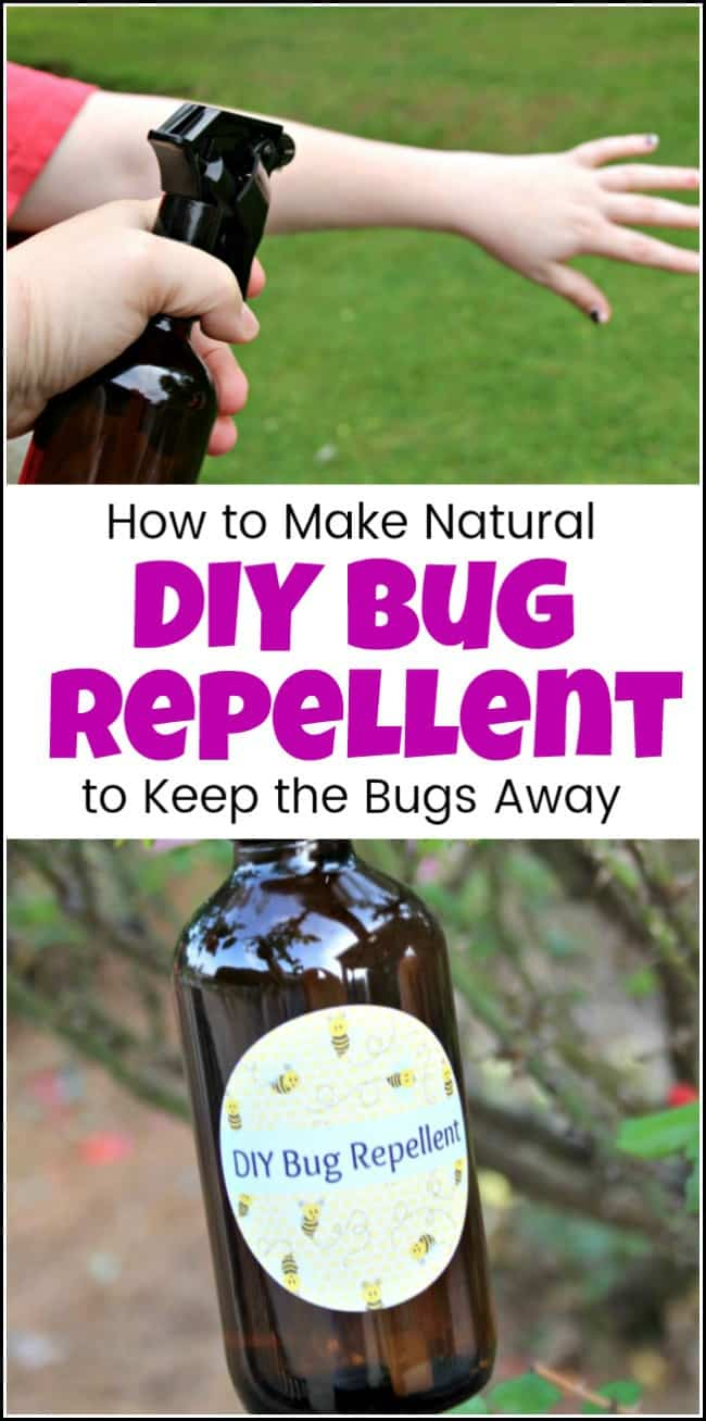 For when you need a DIY bug repellent recipe that is easy to make and all natural. Make homemade bug spray with essential oils to keep those pesky bugs away. Homemade bug repellent that can be safe and effective to enjoy nature with the ones you love. #diybugrepellent #homemadebugspray #homemadebugrepellent #naturalbugspray