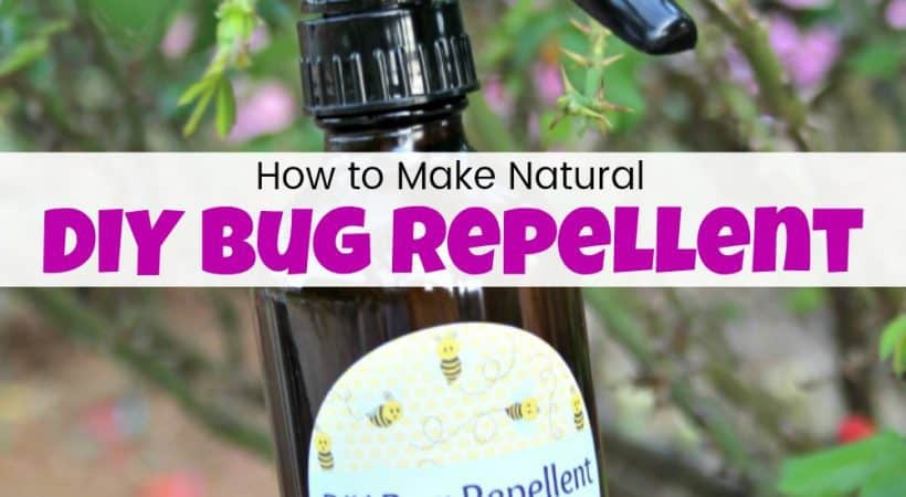 How to Make DIY Bug Repellent Spray to Keep the Bugs Away