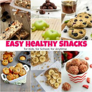 15+ Easy Healthy Snacks for Kids on the Go