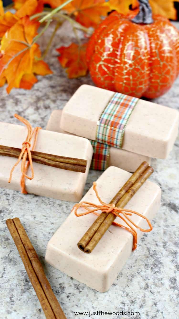 fall soap, autumn soap, pumpkin spice, cinnamon and pumpkin soap, diy soap
