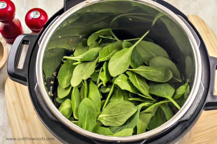 fresh spinach in instant pot, spinach soup, how to make spinach soup in instant pot
