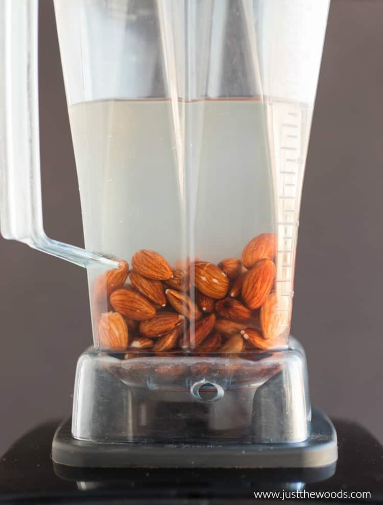 almonds in water in blender, how to make almond milk, making almond milk from scratch
