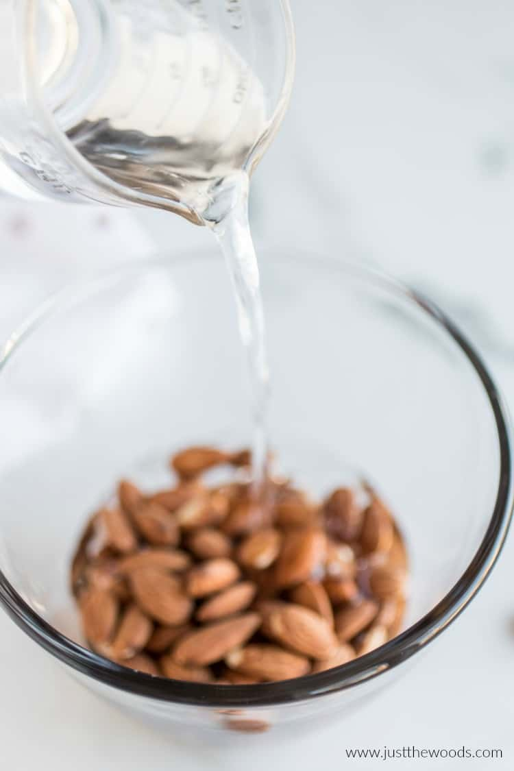 soak almonds in water, making almond milk, almond milk recipe