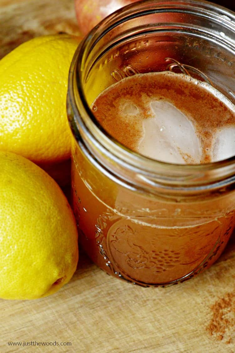apple cider vinegar lemon, detox drink recipe, apple cider vinegar with honey