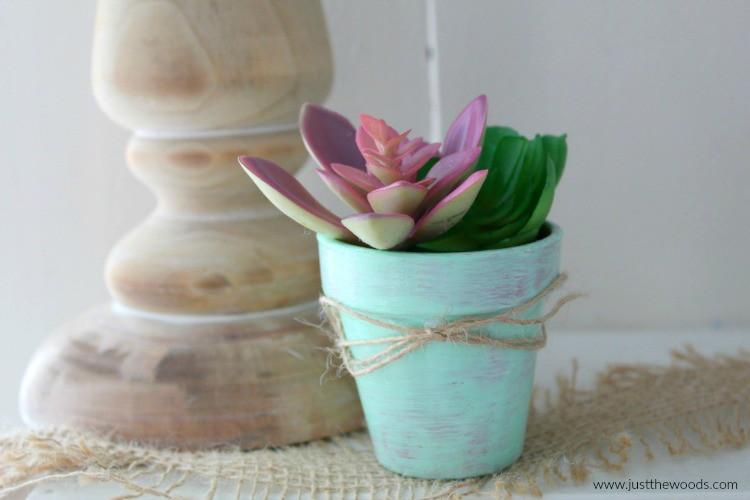 dollar store succulents, DIY Succulent Planter, diy succulent planter ideas
