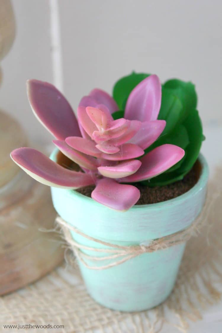 how to make a fake succulent plant, DIY Succulent Planter, small succulent plant
