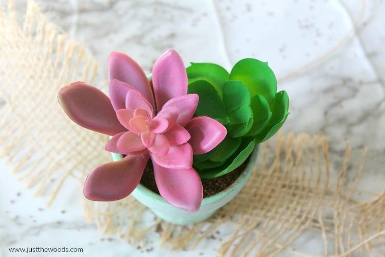 dollar store craft ideas, DIY Succulent Planter, faux succulents, fake succulent plant