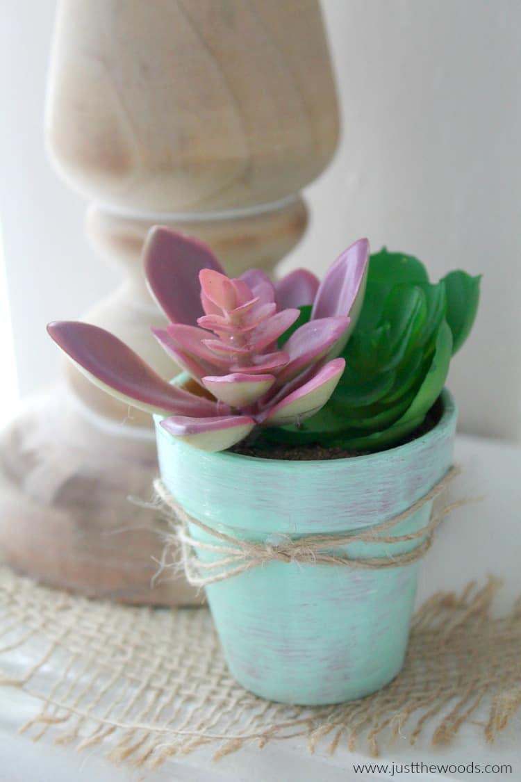 DIY Succulent Planter, succulent planters, succulent planter ideas