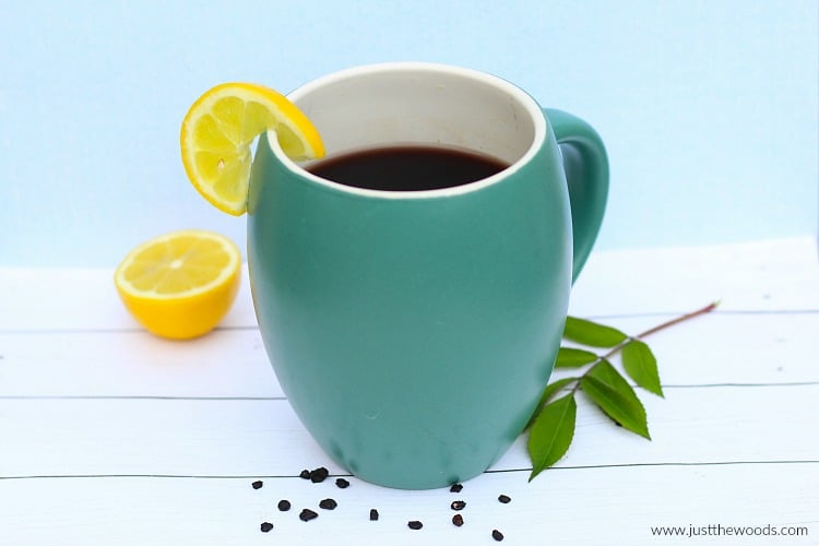 elderberry tea, how to make immunity tea, sambucus tea