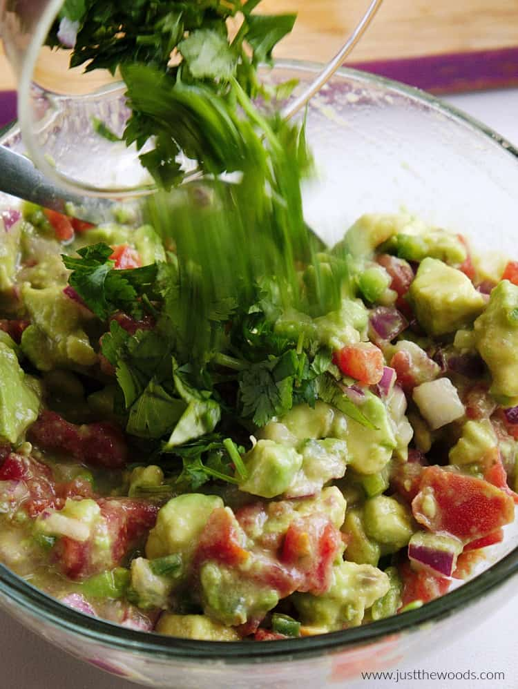 cilantro in guacamole