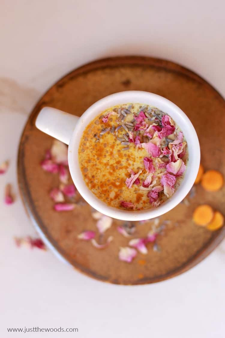 golden milk, moon milk, turmeric milk tea