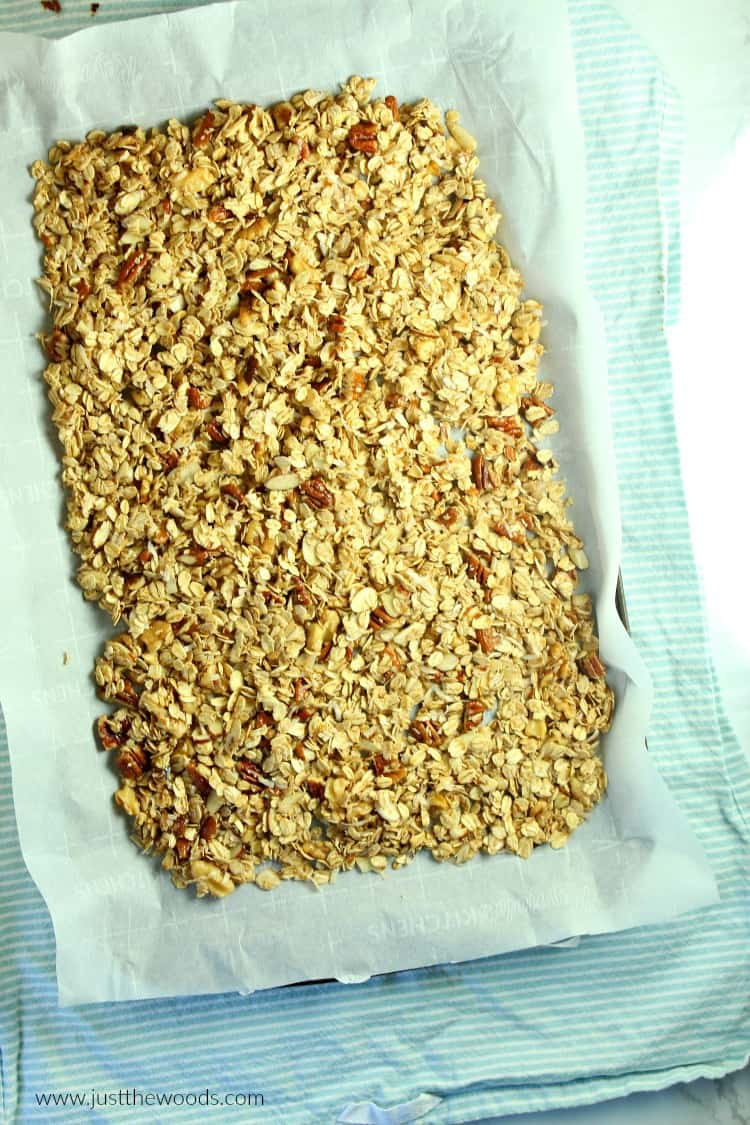 homemade granola recipe healthy