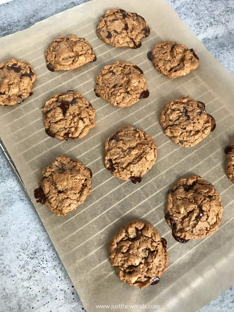chocolate chip and walnut cookie recipe, gluten free cookies