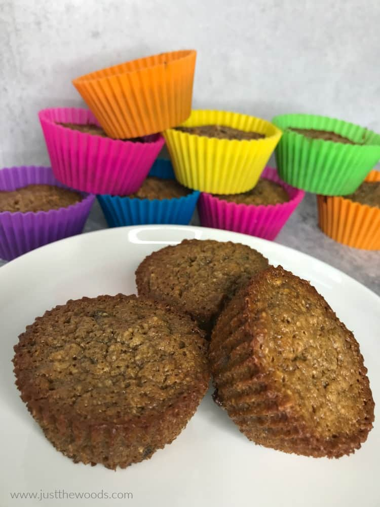 paleo muffins, gluten free chocolate chip muffin recipe