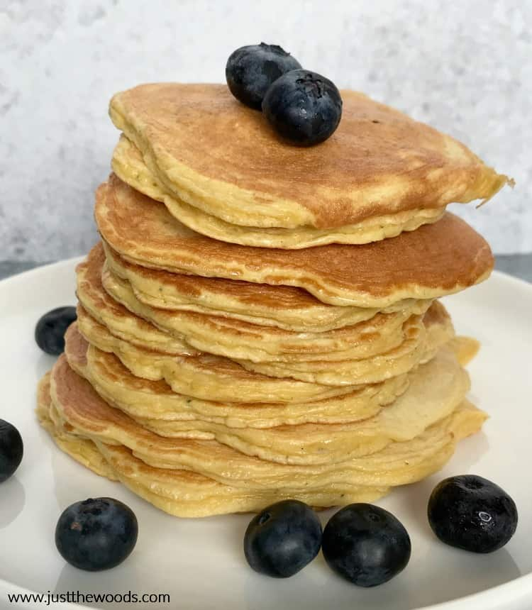 protein blueberry pancakes recipe