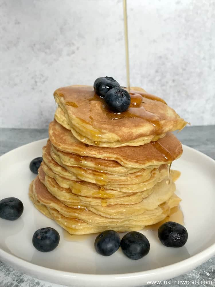 nuzest protein pancake recipe with blueberries