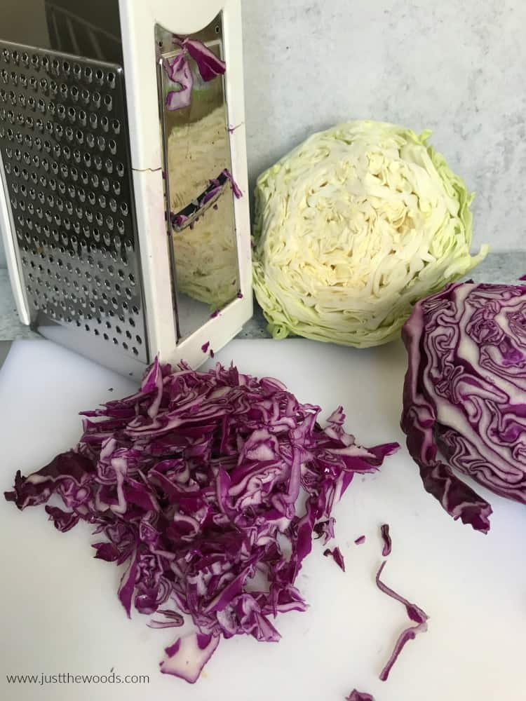 red cabbage for homemade coleslaw with slicer