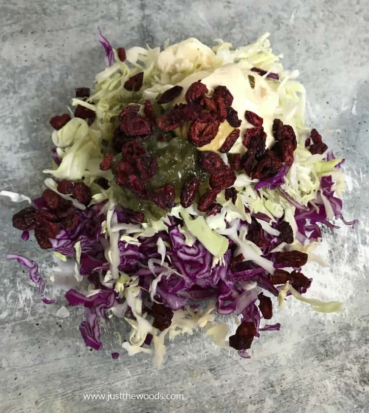 homemade coleslaw with mustard