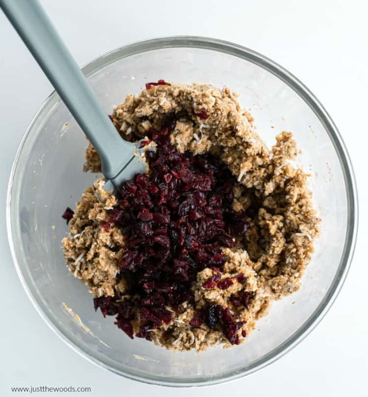 how to make no bake energy balls with cranberries